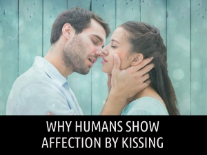 Why Humans Show Affection Kissing