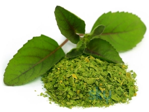 Can Tulsi Save Your Rapidly Falling Hair