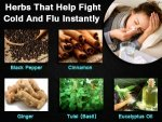 Herbs That Help Fight Cold Flu Instantly