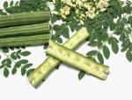 Top Nutritional Benefits Drumstick Seeds