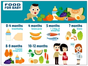 Food Chart Your Baby