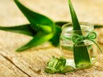Beauty Treatments You Can Make With Aloe Vera Gel