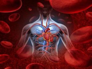 Top Warning Signs Poor Blood Circulation