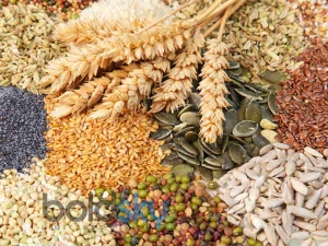 10 Fibre Rich Foods You Should Eat