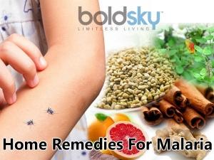 10 Effective Home Remedies Malaria