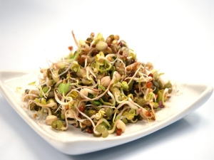 What Happens When You Include Sprouts Your Daily Diet