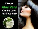 How Apply Aloe Vera Gel On Hair