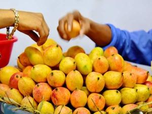Best Tips On Selecting Ripe Mango