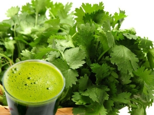 Add Glass Coriander Juice Your Daily Diet See What Happens