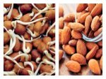 One Spoon Sprouting Is Equals Fifty Almonds