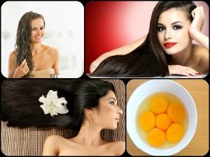 How Eggs Prevent Hair Loss Aid Hair Growth