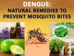 Top 10 Home Remedies Dengue Treatment Should Not Miss