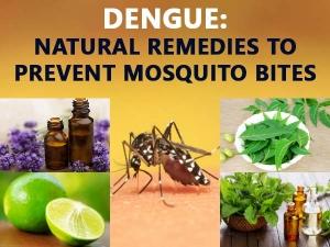 Top 10 Home Remedies Dengue Treatment Should Not Miss