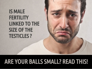 What Happens If Your Testicles Are Small
