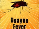Natural Home Remedies Treat Dengue Fever