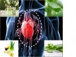 Five Powerful Ways That Aloe Vera Takes Care Your Heart