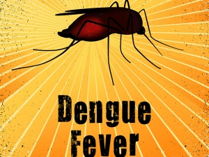 Natural Home Remedies Treat Dengue Fever