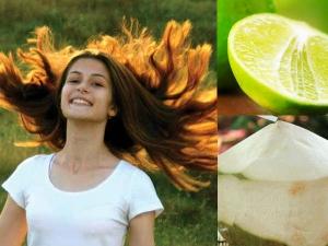 Coconut Cream Hair Spa Treatment