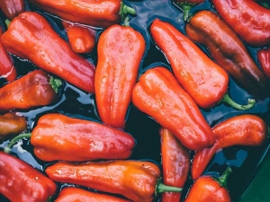 Health Benefits Of Hot Peppers You Should Know
