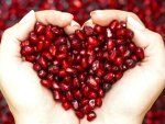 Is It Okay To Have Pomegranate During Pregnancy