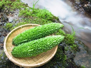 Bitter Gourd Karela In Pregnancy Does It Lead To A Miscarriage