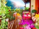 Vaastu Tips For Placing Indoor Plants