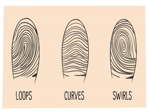 How Fingerprints Defines Your Personality