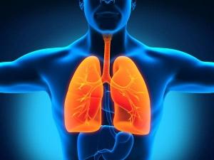 Best Foods Healthy Lungs