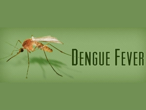 Major Differences Between Dengue And Chikngunya