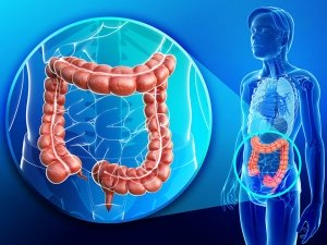 10 Home Remedies Cleanse Your Colon Naturally