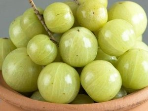 9 Side Effects Amla Which You Not Aware Of