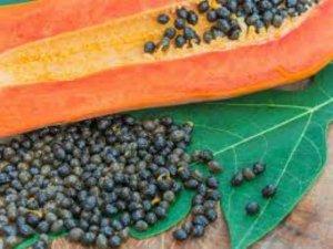 Benefits Papaya Seeds Liver Kidney Detox