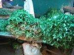 Impressive Health Benefits Of Kenaf Leaves