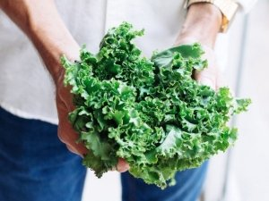Kale Nutrition Benefits And How To Eat