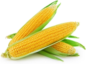 Health Benefits Of Corn During Pregnancy