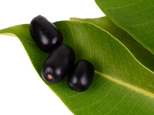 Health Benefits Of Jamun Leaves