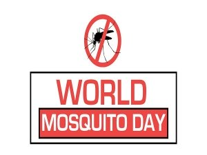 World Mosquito Day 2019 History Theme And Significance