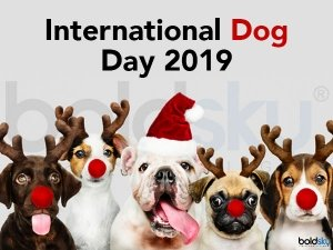 International Dog Day 2019 History And How To Celebrate This Day