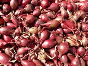 7 Fascinating Health Benefits Of Shallots Nutrition And Vegan Recipes