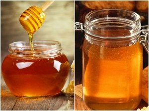 Benefits Of Eating Honey During Pregnancy