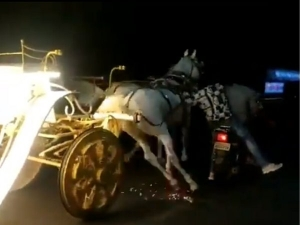 Men On Bike Chase Runaway Horse Carriage Only To Meet With A Cringe Worthy Fate