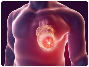 Everything You Need To Know About Heart Tumors