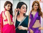 Check Out Shraddha Das Best Saree Moments