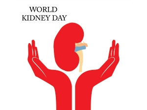 World Kidney Day 2020 Do S And Don Ts Of Kidney Stone Diet