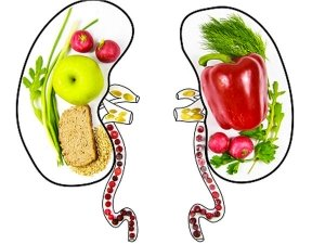 What S A Kidney Diet Here S What To Eat What To Avoid To Keep Your Been Shaped Kidney Healthy