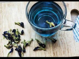 Blue Tea All You Need To Know About This Herbal Tea That May Helps Weight Loss