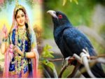 Fasts Festivals Eclipses Makes July An Action Packed Month