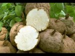 Health And Nutrition Benefits Of Eating Yams