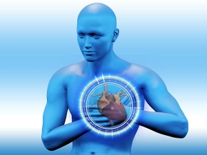 What Is The Link Between Heart And Kidney Disease