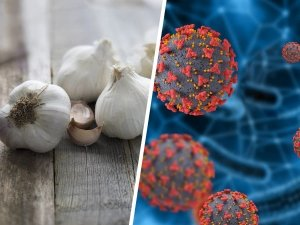 Covid 19 Pandemic Health Benefits Of Garlic
